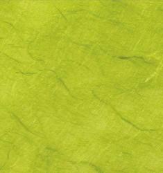 Strohseidepapier Apfelgrün