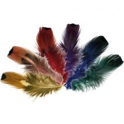 Fasan-Goldside-Federn eignen sich toll zum Basteln von Karnevalsmasken oder Federschmuck Ohrringe.