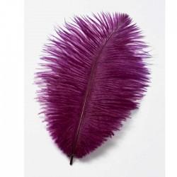 Natürliche, echte Straußenfedern für tollen Haarschmuck im Stil der 20iger Jahre, Moulin Rouge, Charleston.