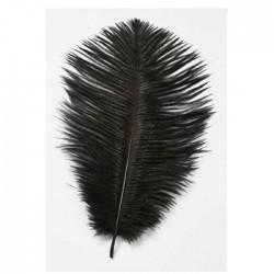 Natürliche, schwarz gefärbte Straußenfedern für tollen Haarschmuck im Stil der 20iger Jahre, Moulin Rouge, Charleston.