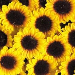 Sonnenblumen (Blütenköpfe), 100 Stk,