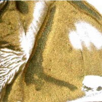 Encaustic Wachsfarbe - Stäbchenform, Gold Nr. 25